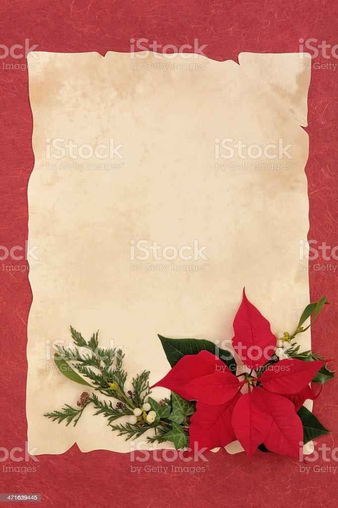 Poinsettia Flower Border royalty-free stock photo