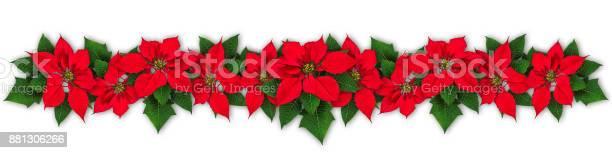 Poinsettia flower wreath picture id881306266?b=1&k=6&m=881306266&s=612x612&h=lwcdhcz50yhz0dealfxh9ofu1wt5r5ygrfxtx8iqvw4=