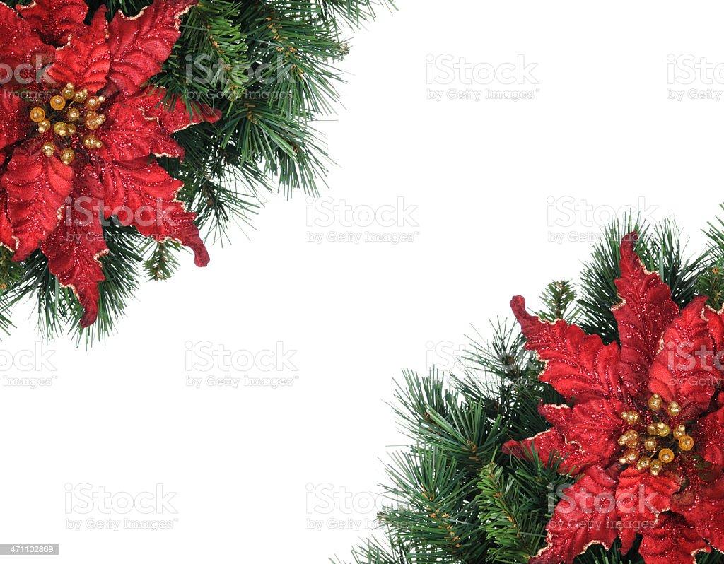Poinsettia Frame (XL) royalty-free stock photo