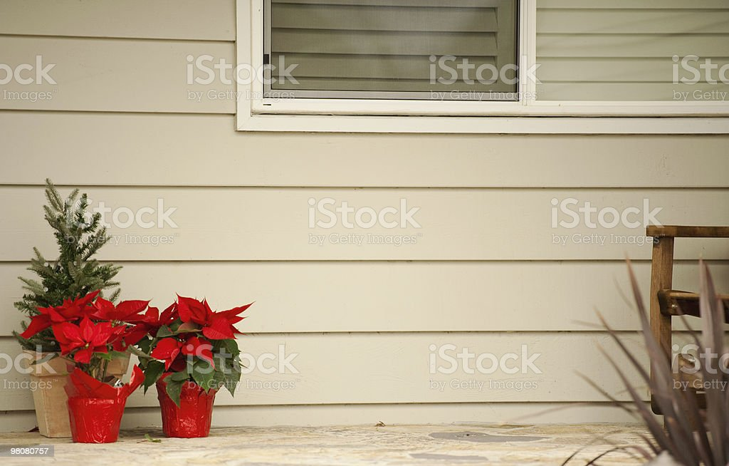 poinsettias on the front porch royalty-free stock photo