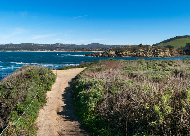 Point Lobos State Natural Reserve, Big Sur, Carmel Highlands, Monterey County, California, USA stock photo