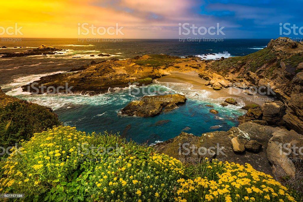 Point Lobos State Park California stock photo