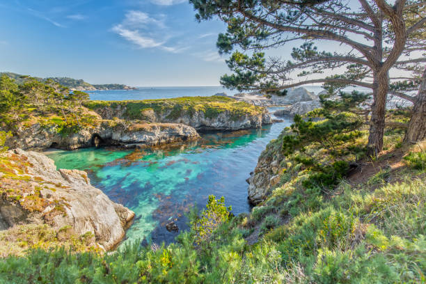 Point Lobos State Reserve at Highway 1 in California stock photo