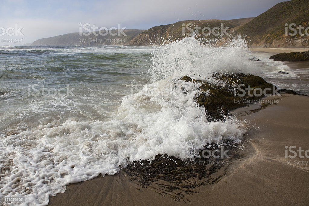 Point Reyes Seashore stock photo