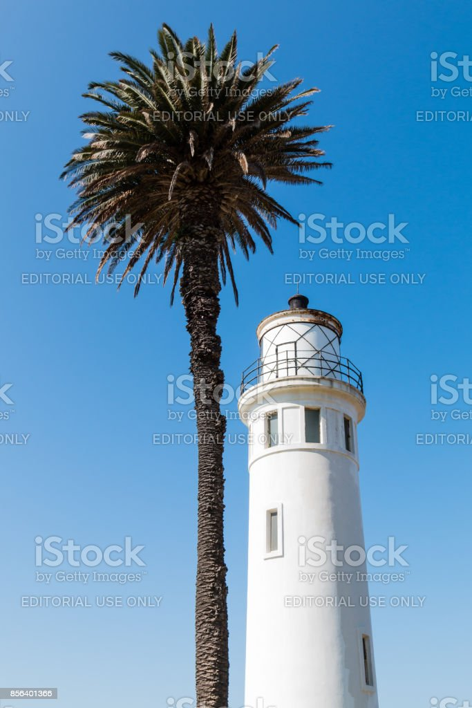 Point Vicente Lighthouse Tower and Palm Tree in California stock photo