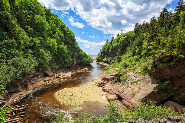 Point Wolfe at Fundy National Park, New Brunswick, Canada stock photo