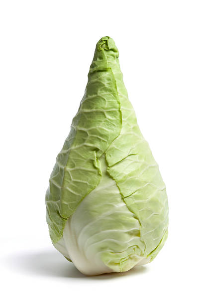 pointed cabbage on white background - gepunt stockfoto's en -beelden