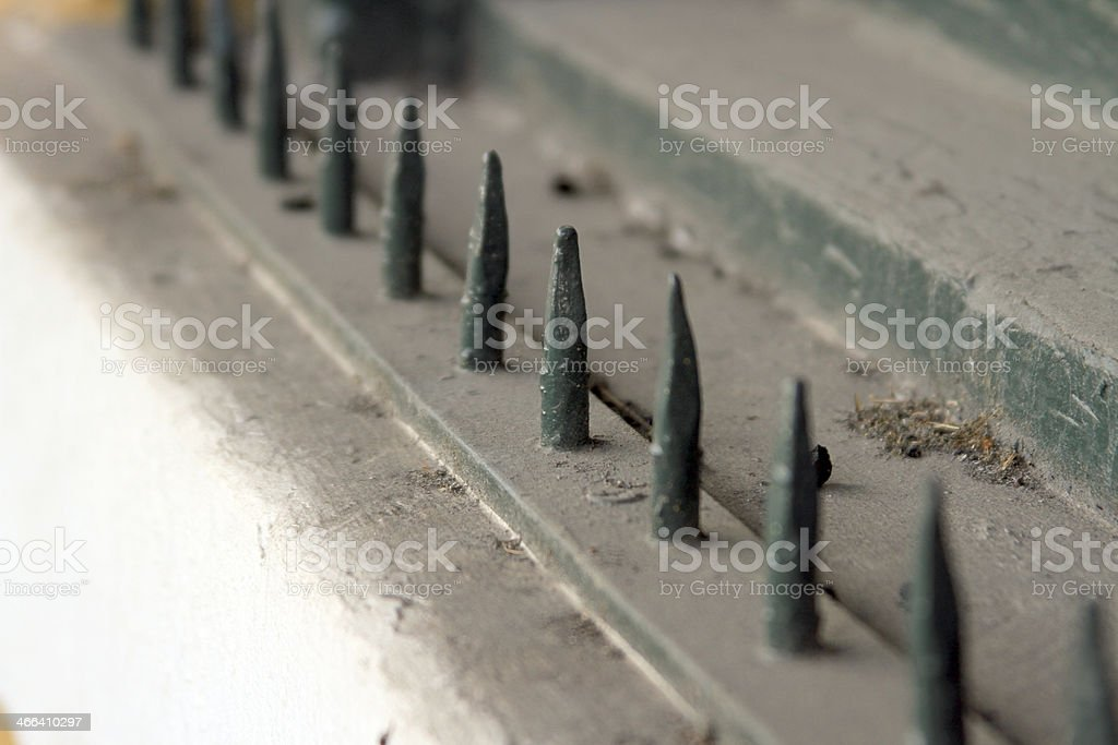 Pointed royalty-free stock photo