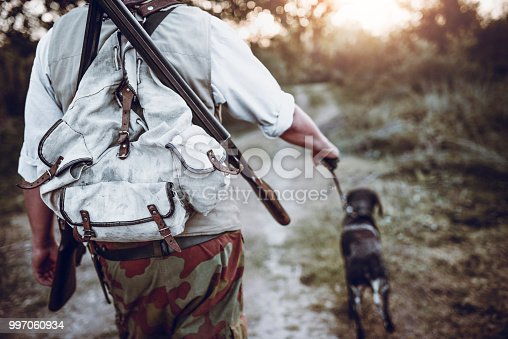 Pointer Dog Leading Hunter Close To Bird Prey