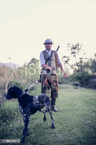 Pointer Hound Leading Hunter Through Swamp