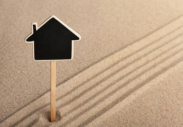 Pointer house debout dans le sable - Photo