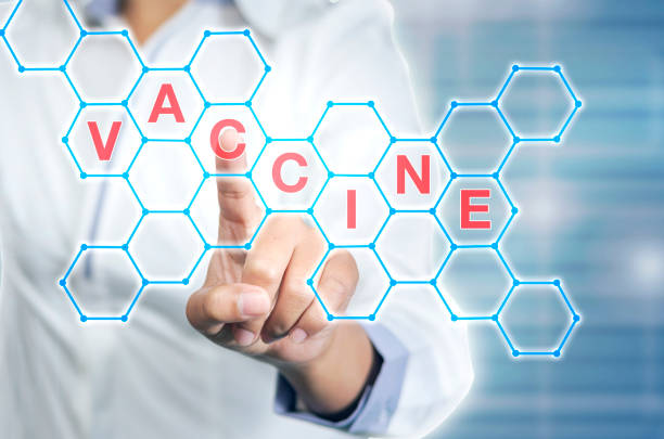 Pointing on word vaccine stock photo