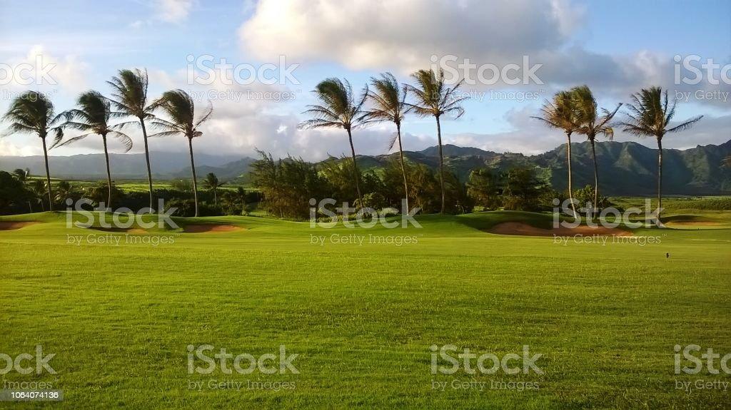 Golf cours in the south of Kauai , near beaches a hiking trail,...