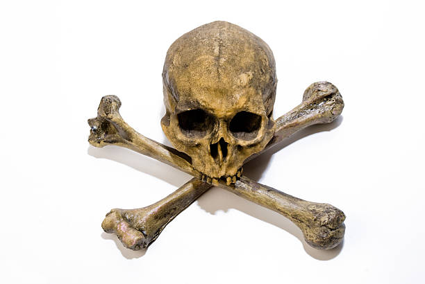 poison sign Pirate sign made with real bones and skull. Has white background and also could be use to represent danger or poison deathly stock pictures, royalty-free photos & images