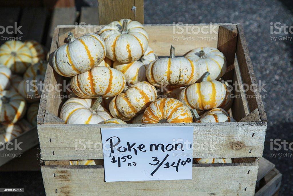 Pokemon Squash for Sale at Farmers Market stock photo