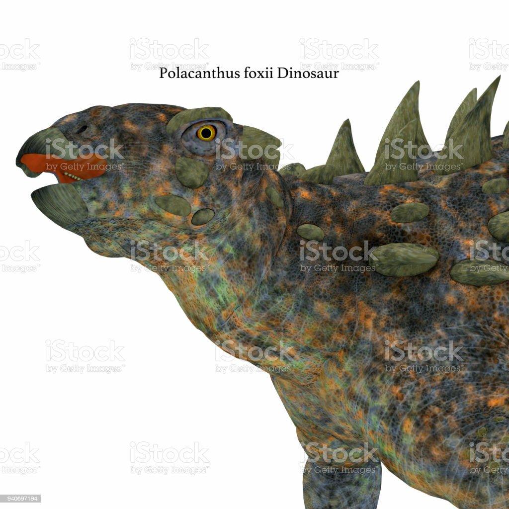 Cabeça dinossauro Polacanto - foto de acervo