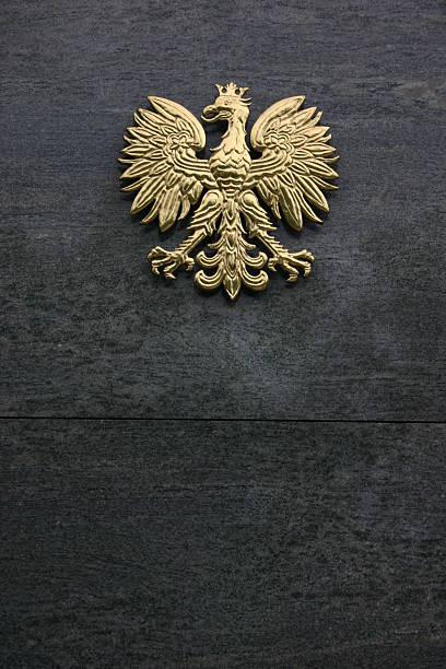 Polen – Polnische Golden Eagle – Foto