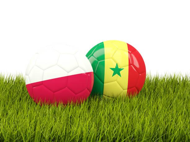 Polónia vs Senegal. Conceito de futebol. Bolas de futebol com bandeiras na grama verde - foto de acervo