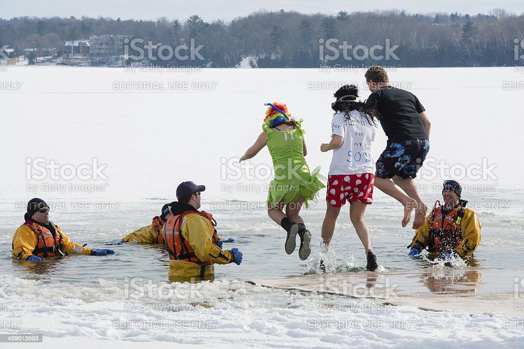 Polar Bear Dip stock photo