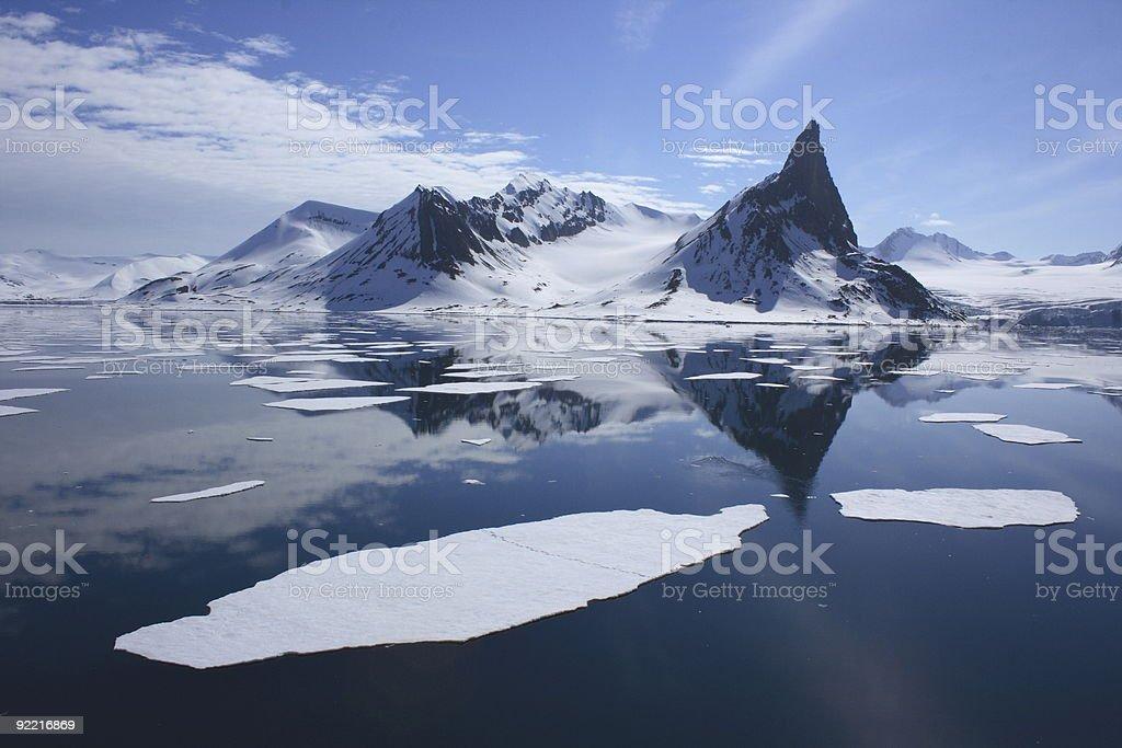 Polar Bear Footprints in the Arctic Ice stock photo
