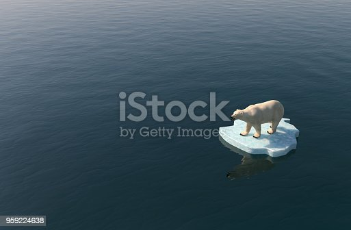 Polar bear on a little iceberg