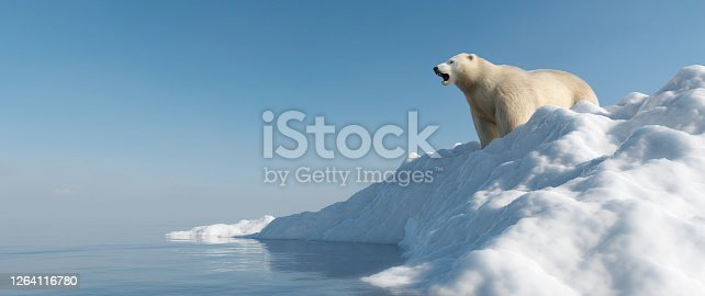 Polar bear on iceberg. Melting ice and global warming. Climate change