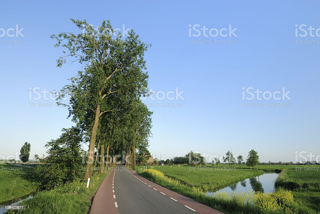 Polder landscape in the Netherlands with ditch royalty-free stock photo
