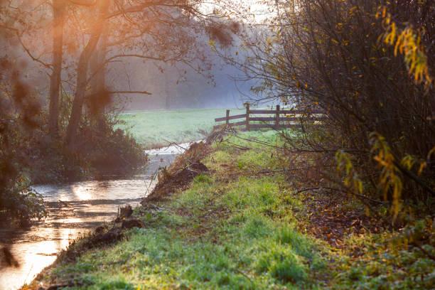 Polder zicht met hek en sloot in de herfst foto