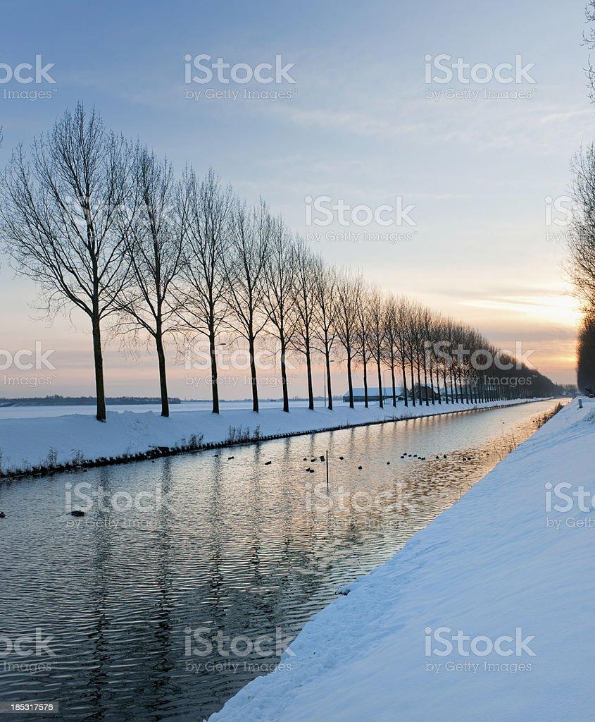 polder wintry landscape inThe Netherlands royalty-free stock photo
