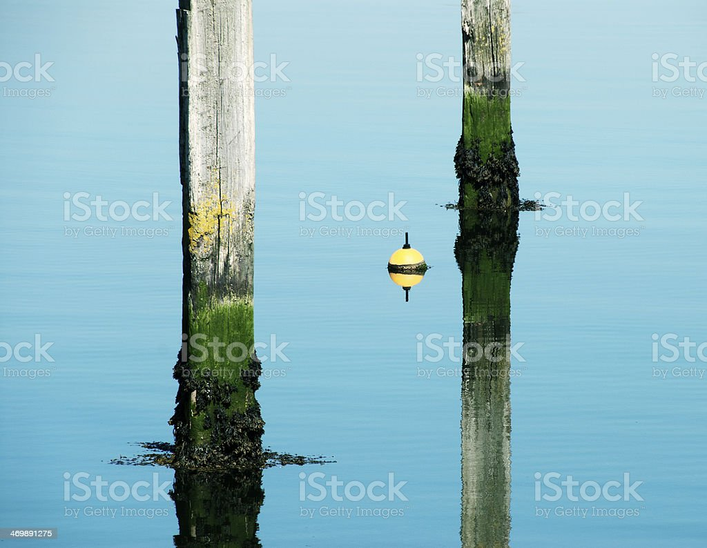 Poles and buoy reflecting in the water royalty-free stock photo