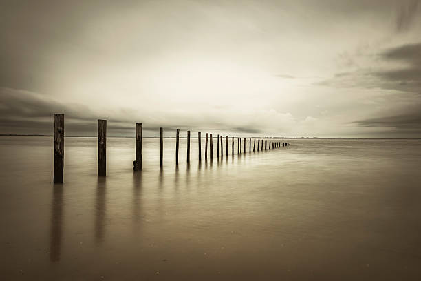 poles in the at the beach in sepia - sepia stock photos and pictures