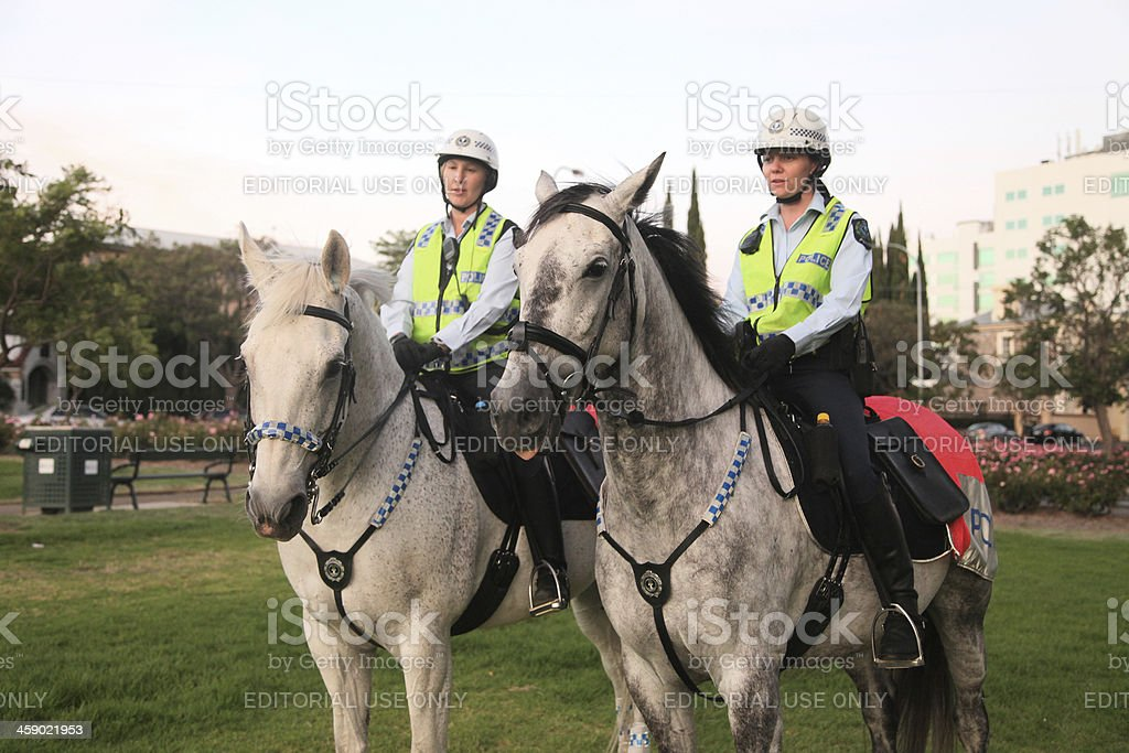 Police Greys stock photo