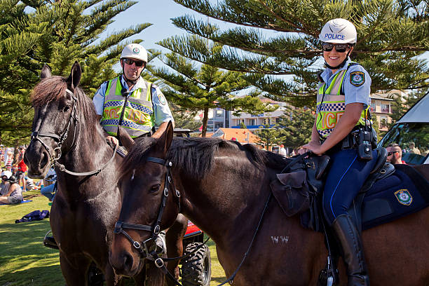 Police horses and riders in Coogee, Sydney stock photo