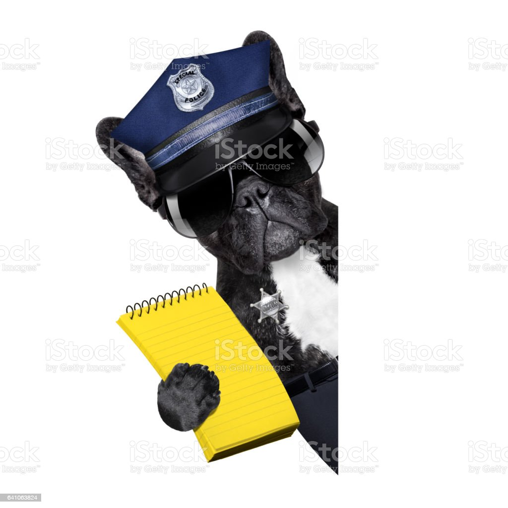 policeman dog with  ticket fine stock photo