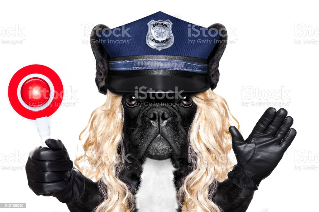policeman or policewoman with dog with stop sign stock photo