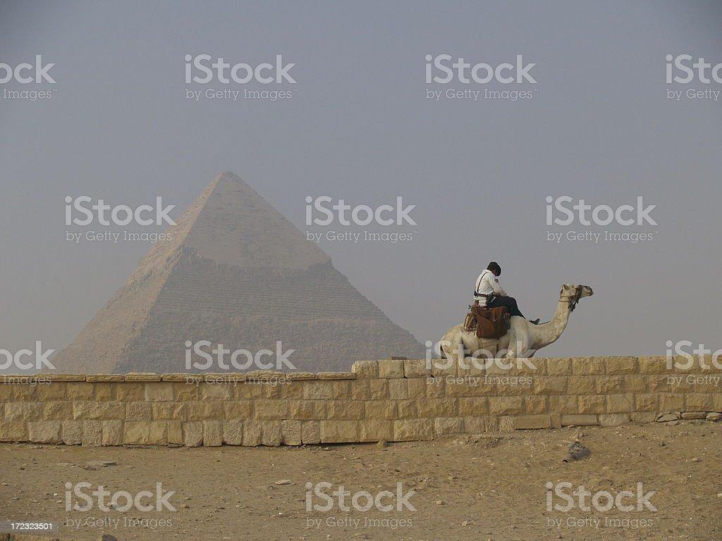Policeman riding a camel stock photo