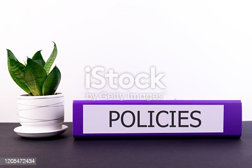 464906632 istock photo policies office folder lies on a dark table with a flowerpot and a flower on a light background 1205472434