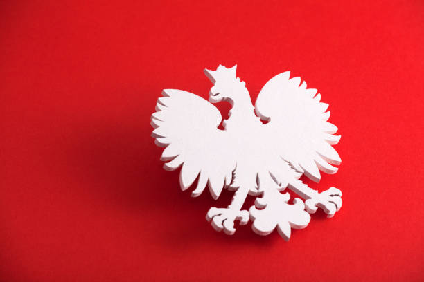 polish coat of arms on red background - poland stock photos and pictures