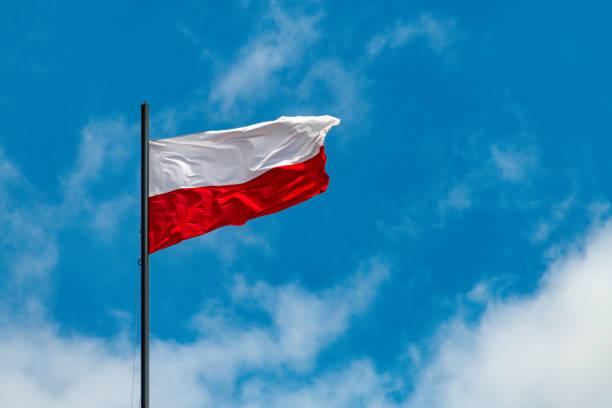 Polish flag flies on a sunny day stock photo