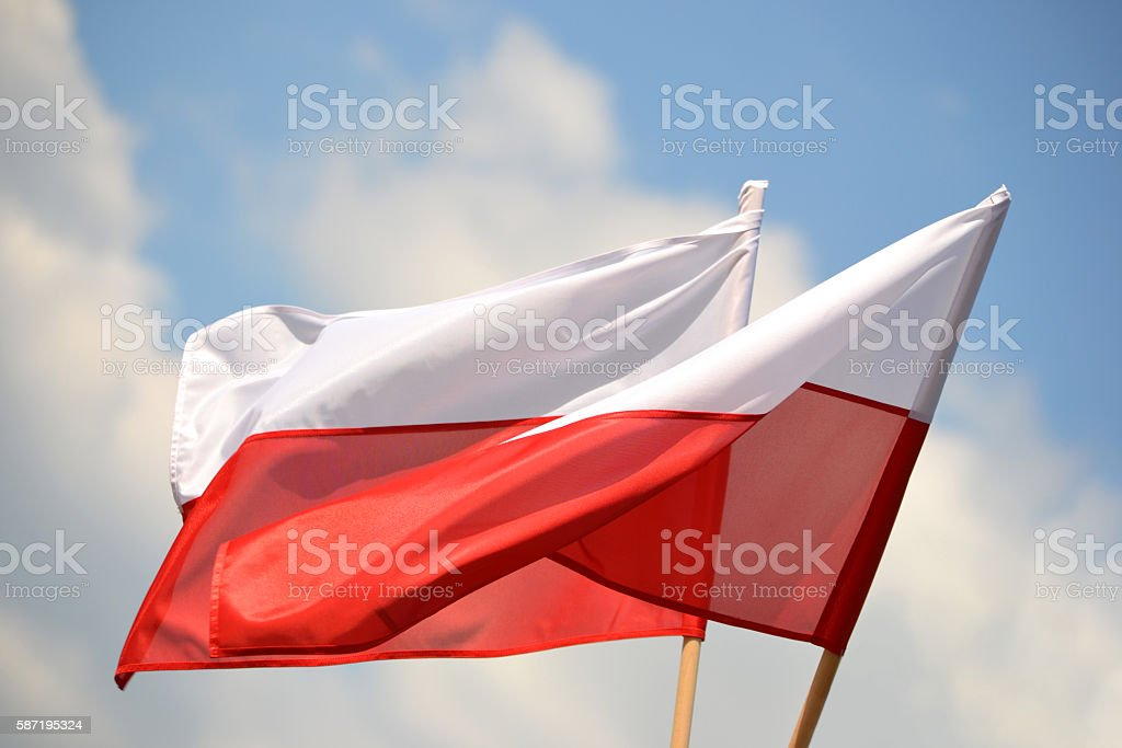 Polish flags stock photo