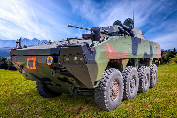 polish military battlefield transport vehicle - land vehicle stock photos and pictures