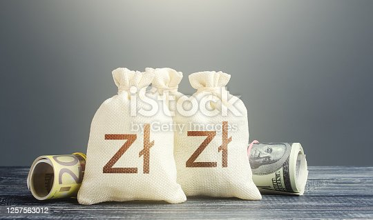 Polish zloty money bags and cash. Financial resources, grants, project financing. National gold and foreign exchange reserve. Economy monetary policy. Capital Investments. Trade development. Lending