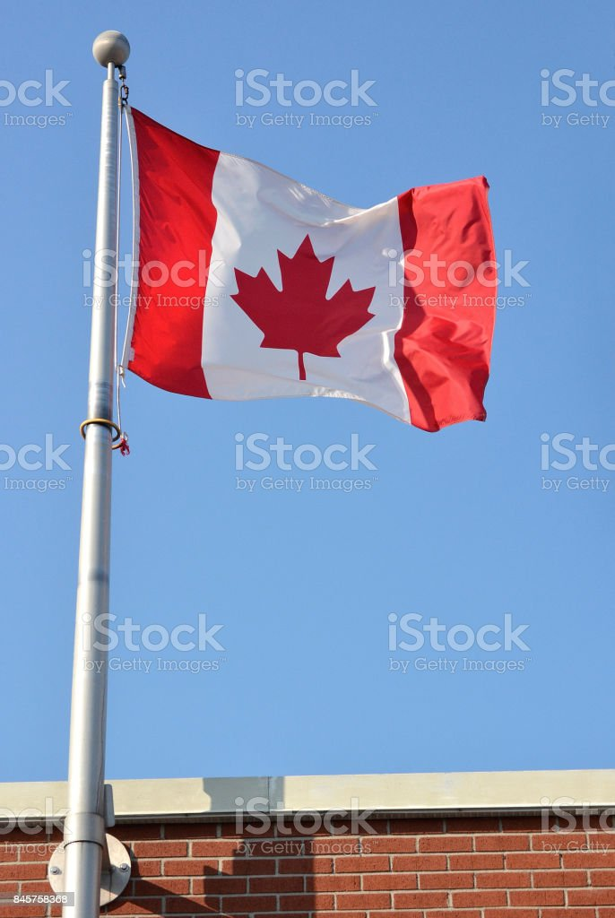 A close up, vertical shot, of a Canadian flag flying against a bright...