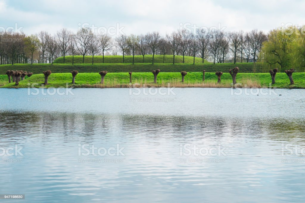 pollard willow along lake in fortified city Geertruidenberg, The Netherlands stock photo