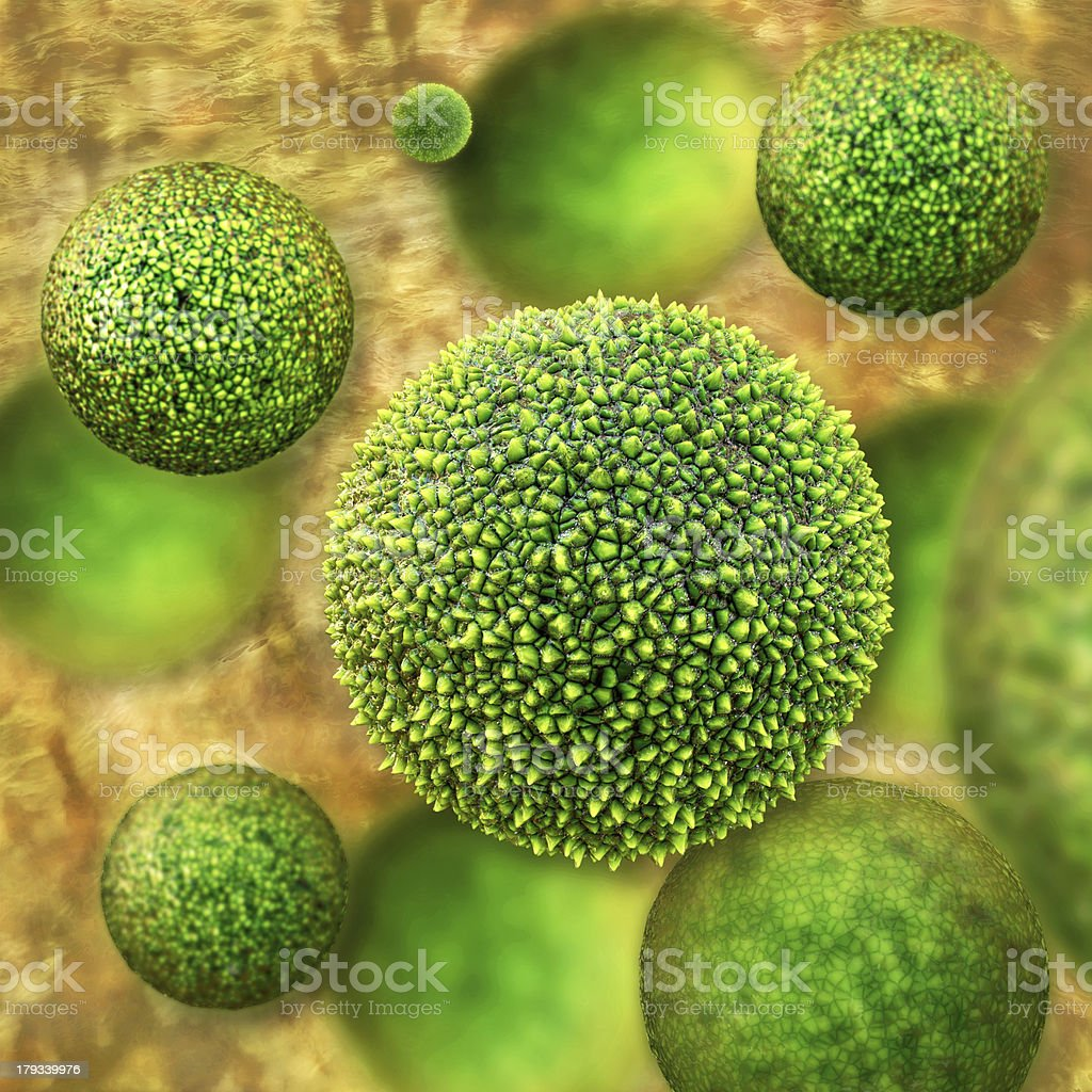Pollen - 3d rendered illustration royalty-free stock photo
