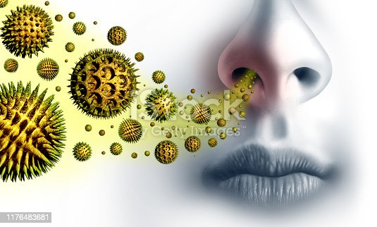 istock Pollen Allergies Symptoms 1176483681