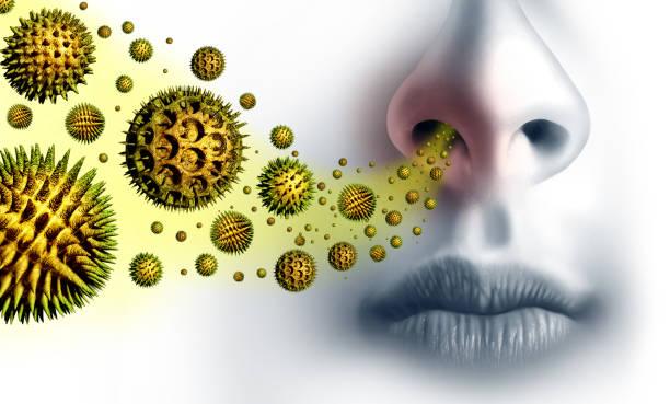 pollenallergien symptome - heuschnupfen stock-fotos und bilder
