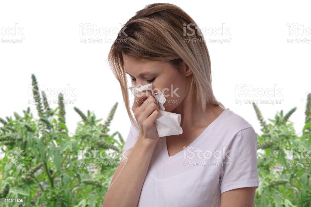 Pollen allergy, ambrosia artemisiifolia summer. Women sneezing in a tissue – zdjęcie