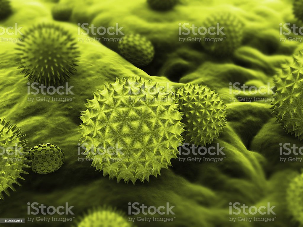 pollen illustration stock photo