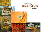 Pollen. The healing properties of pollen. As bees collect pollen. Apitherapy. Photo collage on beekeeping theme